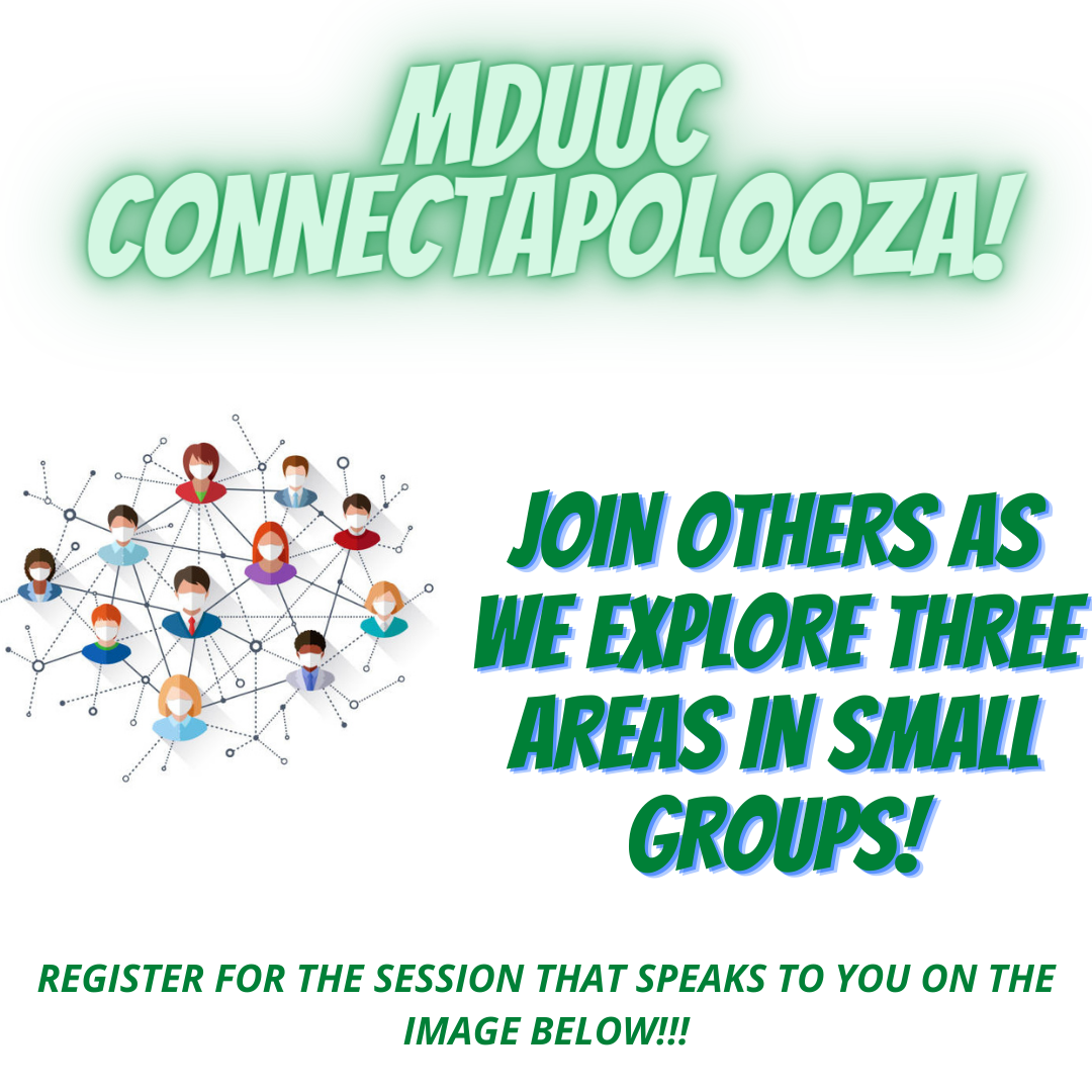 connectapolooza