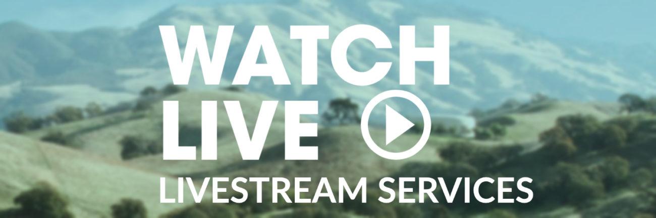 livestream button (1)